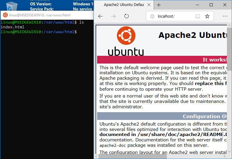 set up ubuntu bash and vscode on windows 10 for web development